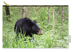 Carry-all Pouch featuring the photograph Black Bear by Andrea Silies