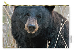 Black Bear Closeup Carry-all Pouch