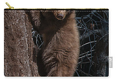 Black Bear Cub Sequoia National Park Carry-all Pouch