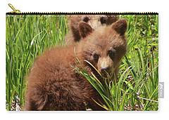 Black Bear Cubs Carry-all Pouch
