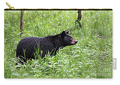 Carry-all Pouch featuring the photograph Black Bear In The Woods by Andrea Silies