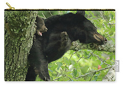 Carry-all Pouch featuring the photograph Black Bear In Tree With Cub by Coby Cooper
