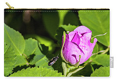 Carry-all Pouch featuring the photograph Black Bee On Approach by Darcy Michaelchuk