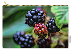 Black Berries Carry-all Pouch