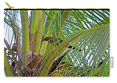 Carry-all Pouch featuring the photograph Black Bird In Tree by Francesca Mackenney
