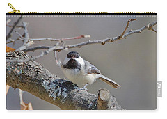 Carry-all Pouch featuring the photograph Black Capped Chickadee 1109 by Michael Peychich