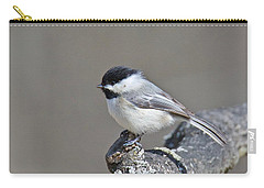 Carry-all Pouch featuring the photograph Black Capped Chickadee 1128 by Michael Peychich