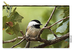 Black Capped Chickadee On Branch Carry-all Pouch by Sheila Brown