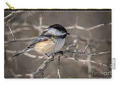 Black-capped Chickadee Iv Carry-all Pouch