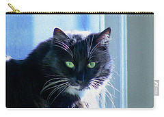 Black Cat In Sun Carry-all Pouch