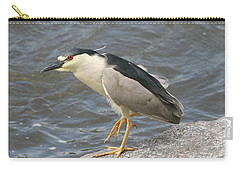 Carry-all Pouch featuring the photograph Black-crowned Night Heron by Doris Potter