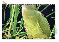 Carry-all Pouch featuring the photograph Black Crowned Night Heron by Joseph Hollingsworth
