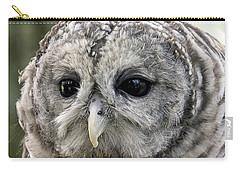 Black Eye Owl Carry-all Pouch by Bob Slitzan