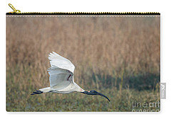 Black-headed Ibis 01 Carry-all Pouch