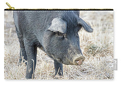 Carry-all Pouch featuring the photograph Black Pig Close-up by James BO Insogna