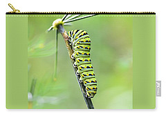 Black Swallowtail Caterpillar Carry-all Pouch