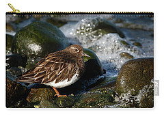 Black Turnstone Carry-all Pouch