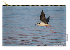 Carry-all Pouch featuring the photograph Black-winged Stilt - Himantopus Himantopus by Jivko Nakev
