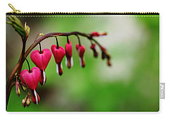 Carry-all Pouch featuring the photograph Bleeding Hearts Flower Of Romance by Debbie Oppermann