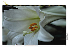Carry-all Pouch featuring the photograph Blessings  by Connie Handscomb