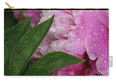 Blessings Of The Rains Carry-all Pouch by Rachel Cohen