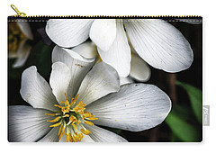 Carry-all Pouch featuring the photograph Bloodroot In Bloom by Thomas R Fletcher