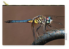 Blue And Gold Dragonfly Carry-all Pouch by Christopher Holmes