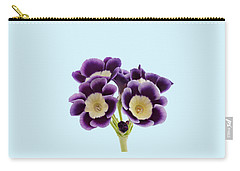 Blue Auricula On A Transparent Background Carry-all Pouch