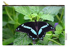 Blue Banded Swallowtail Butterfly Carry-all Pouch