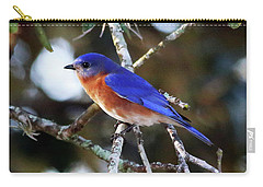 Blue Bird Carry-all Pouch by Lamarre Labadie