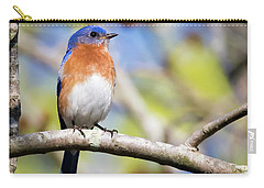 Blue Bird Carry-all Pouch by Ricky L Jones