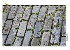 Blue Bricks  Carry-all Pouch