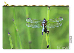 Blue Dasher Carry-all Pouch
