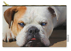 Blue-eyed English Bulldog - Painting Carry-all Pouch