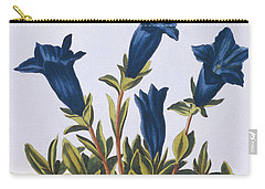 Blue Gentian  Trumpet Flower  Carry-all Pouch by Pierre-Joseph Buchoz