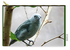 Blue-grey Tanager 2 Carry-all Pouch