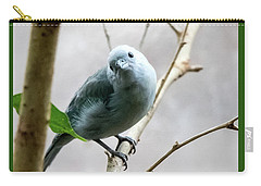 Blue-grey Tanager Carry-all Pouch