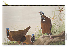 Blue Headed Pigeon Carry-all Pouch by John James Audubon