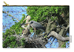 Carry-all Pouch featuring the photograph Blue Heron Series Baby 1 by Deborah Benoit