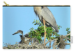 Carry-all Pouch featuring the photograph Blue Heron Series Baby 2 by Deborah Benoit