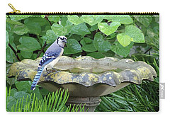 Carry-all Pouch featuring the photograph Blue Jay At The Birdbath II by Richard Rizzo