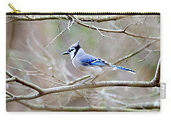 Carry-all Pouch featuring the photograph Blue Jay by George Randy Bass