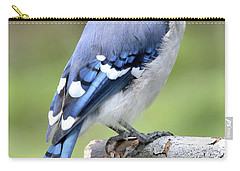 Blue Jay Juvenile Animal Portrait Carry-all Pouch