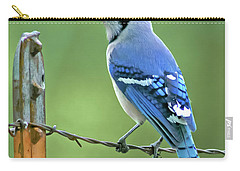 Blue Jay On The Fence Carry-all Pouch