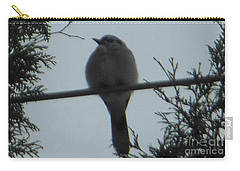 Blue Jay On Wire Carry-all Pouch