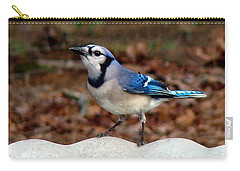 Blue Jay Strikes A Pose Carry-all Pouch