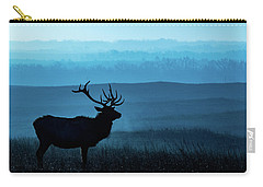 Blue Sunrise Carry-all Pouch by Jay Stockhaus