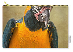 Blue Throated Macaw Portrait Carry-all Pouch by Jamie Pham