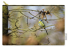 Carry-all Pouch featuring the photograph Blue Tit Woods by Matt Malloy
