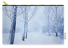 Blue Winter Path Carry-all Pouch by Theresa Tahara
